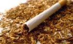 В Петербурге ликвидировали подпольный табачный цех